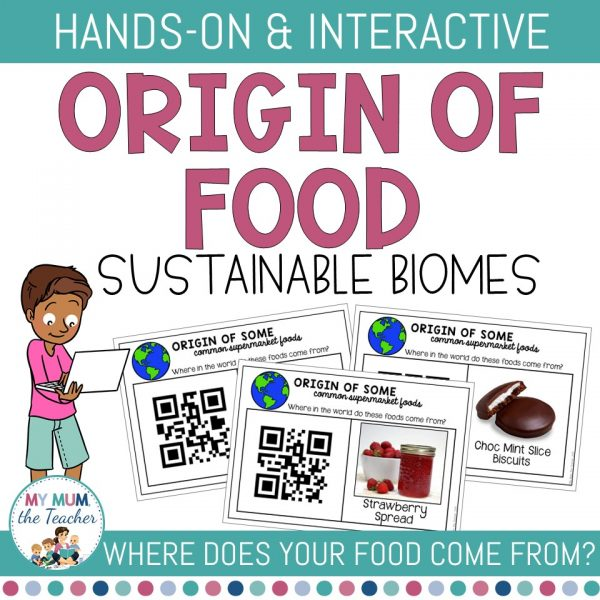 origin-of-food-qr-code-activity-cover